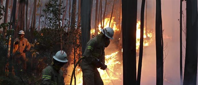 Φονική πυρκαγιά στην Πορτογαλία: Στους 43 οι νεκροί
